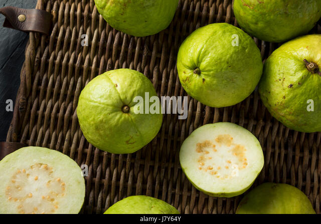 Guavas stock photos guavas stock images alamy raw organic green large guava ready to eat stock image ccuart Gallery