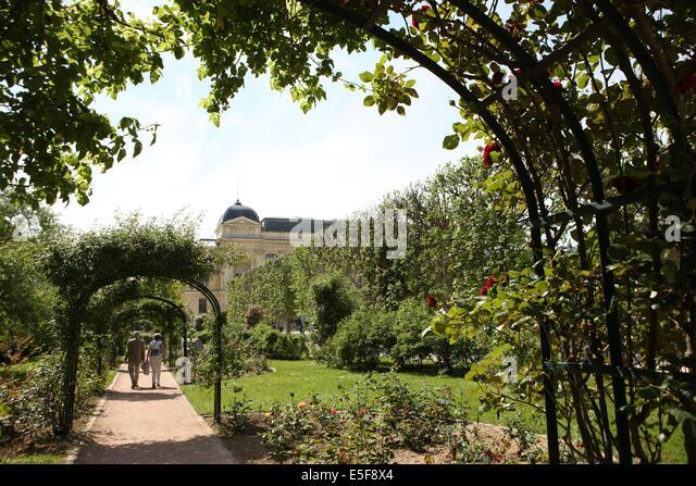 Rosier stock photos rosier stock images alamy for Rosier jardin de france