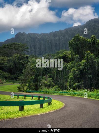 Road In Hoomaluhia Botanical Gardens. Oahu, Hawaii   Stock Image