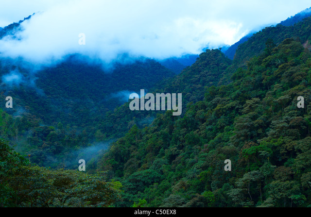 Misty Mountains Andes Stock Photos & Misty Mountains Andes ...