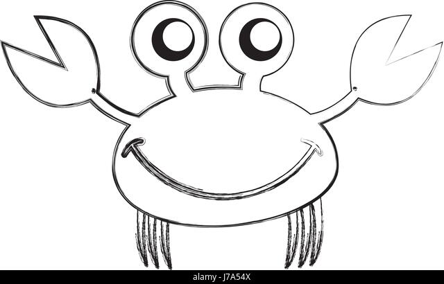 Drawing Reference besides Crab Crab Face besides  on spider close up of front view
