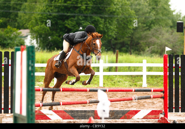 Red Chestnut Horse Jumping - photo#43