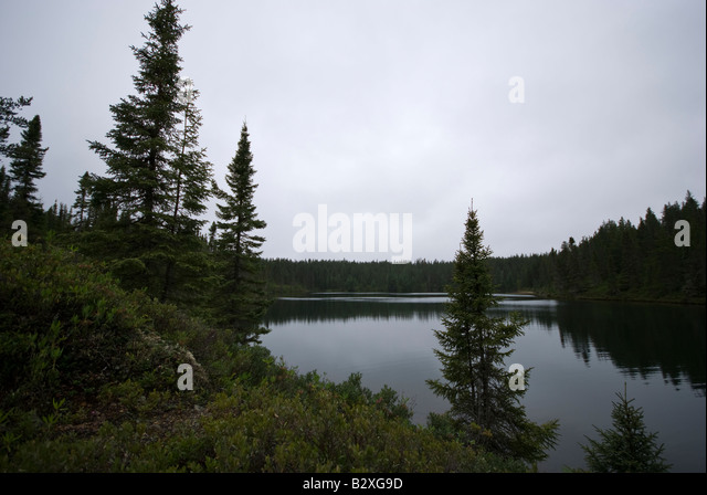 Grands Jardins National Park Stock Photos & Grands Jardins ...