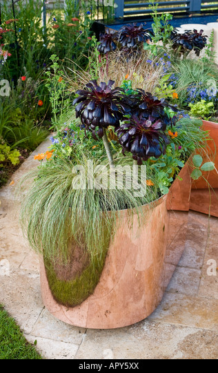 carex plant stock photos & carex plant stock images - page 11 - alamy, Terrassen ideen