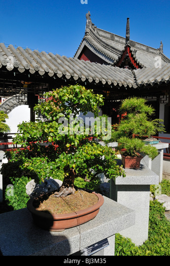 Chinese garden stock photos chinese garden stock images for Jardin de china
