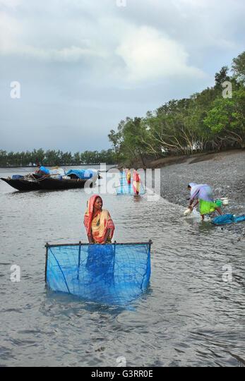 Bangladesh women stock photos bangladesh women stock for Closest fishing store