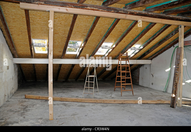 Skylight Windows, Roof, Roof Structure, Window, Old Building,  Refurbishment, Housing