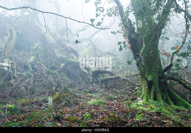 Outdoorphotography Stock Photos & Outdoorphotography Stock ...