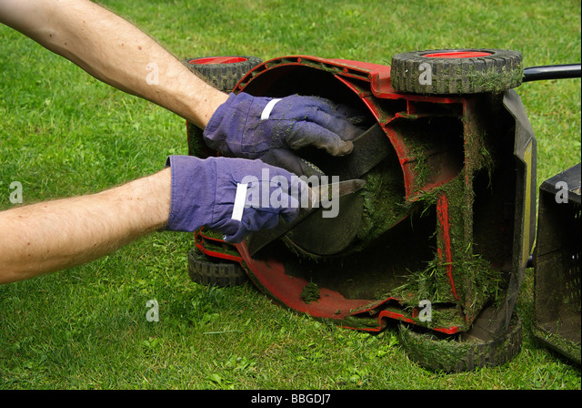hand mower stock photos hand mower stock images alamy. Black Bedroom Furniture Sets. Home Design Ideas