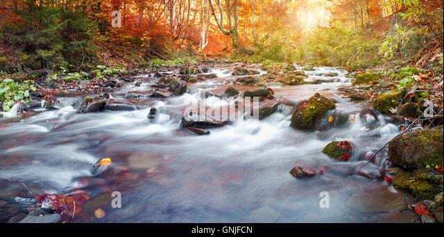 Sunny Crimea Rainbow Trail Of Memories