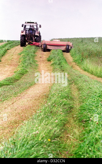 how to cut grass silo