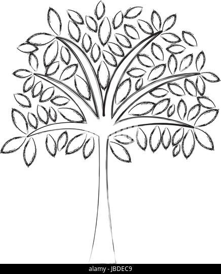 sketch draw tree cartoon stock image