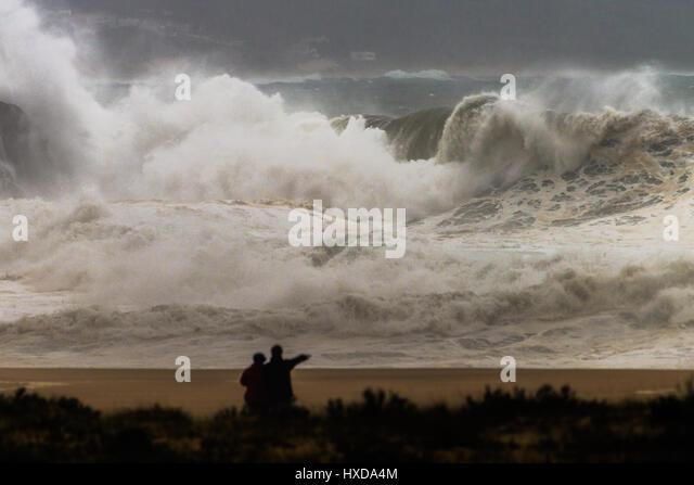 rogue-wave-at-seaside-hxda4m.jpg