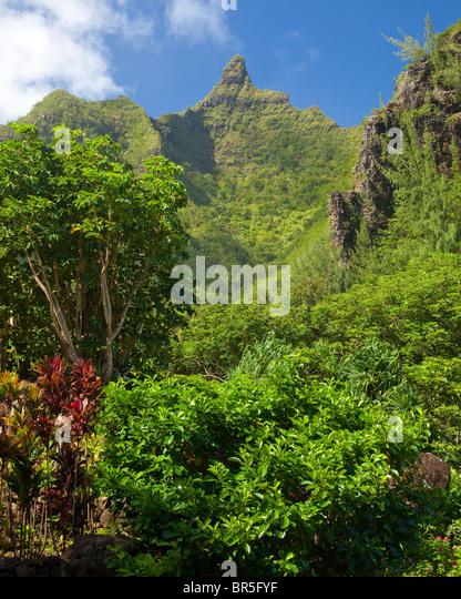 Hawaii Tropical Botanical Stock Photos Hawaii Tropical Botanical Stock Images Alamy