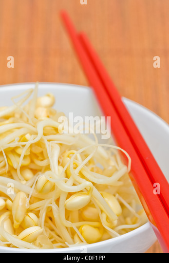 how to keep bean sprouts fresh