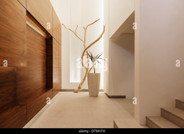 Entrance hall interior wood stock photos entrance hall for Modern entrance hall