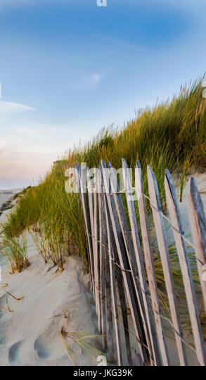 Le bois stock photos le bois stock images alamy for Le jardin le touquet