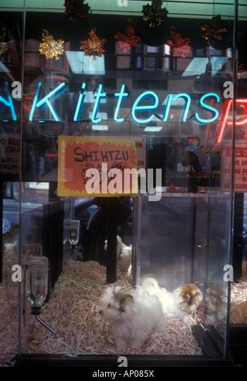 Pet Food Stores Upper East Side