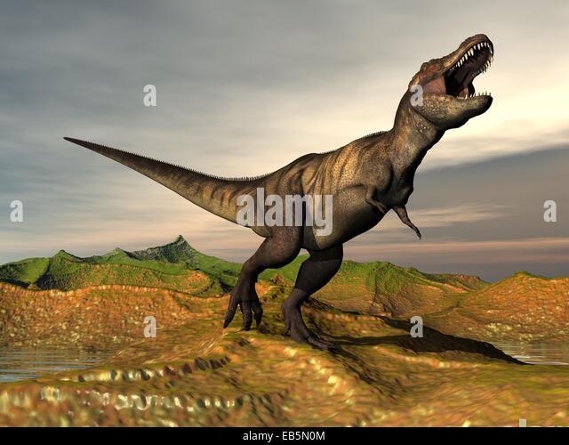 Tyrannosaurus Rex Tooth Stock Photos & Tyrannosaurus Rex