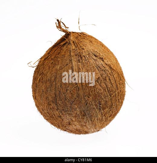 Coconut husk stock photos coconut husk stock images alamy for Whole coconut bird feeders