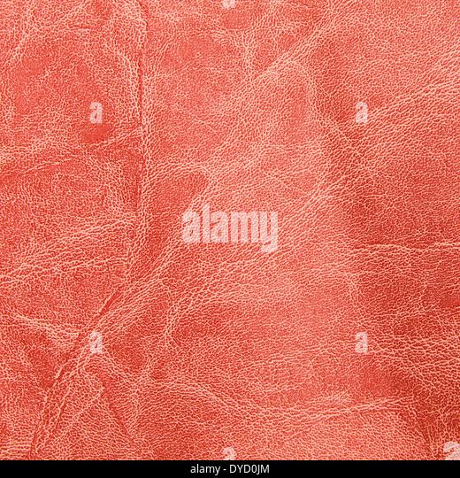 worn leather jacket stock photos amp worn leather jacket