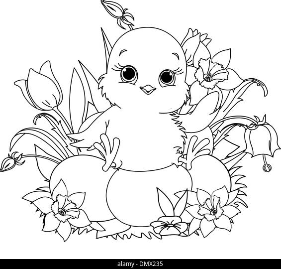 happy easter chick coloring page stock image