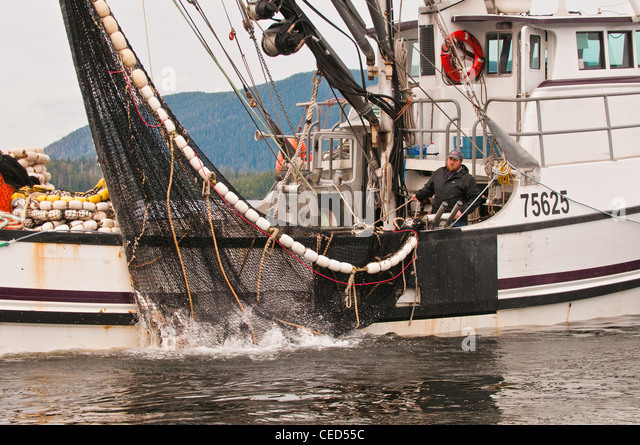 Seining stock photos seining stock images alamy for Purse seine fishing