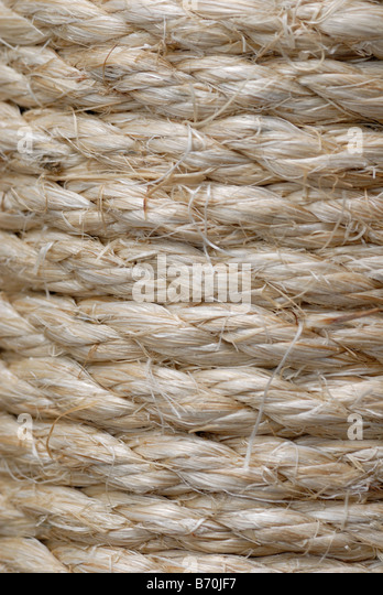 a closeup of thick sisal rope wrapped on a pole stock image - Sisal Rope