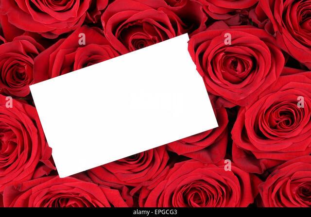 Rote Rosen Zum Valentinstag Oder Muttertag Mit Leerem Zettel Mit  Textfreiraum   Stock Image