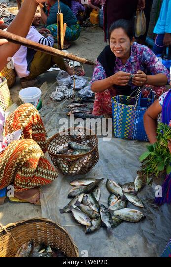 Biruma stock photos biruma stock images alamy for River fish market