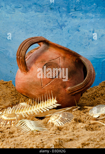 Ceramic Fish Bones : Fish bones stock photos images alamy