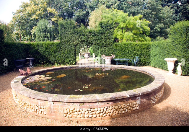 Garden pond uk fish stock photos garden pond uk fish for Decorative pond fish
