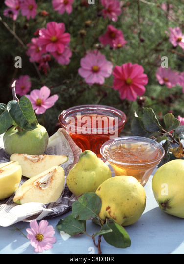 Quince jelly and quince jam - Stock Image