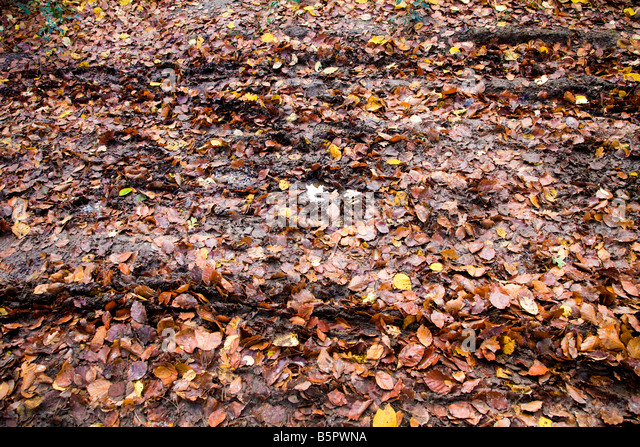 Tyre Track Mud Stock Photos Amp Tyre Track Mud Stock Images