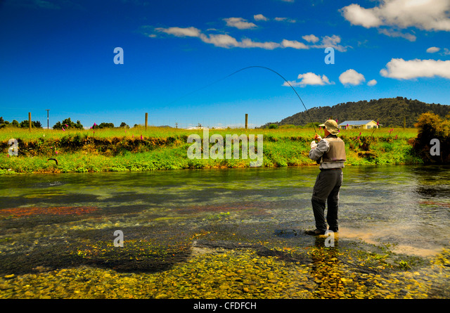 single men in fly creek Red's fly shop combines the biggest fly fishing inventory in the country with riverside  single hand fly rods  redington crosswater men's waders our.
