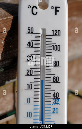 Superb Outside Thermometer In Garden   Stock Image