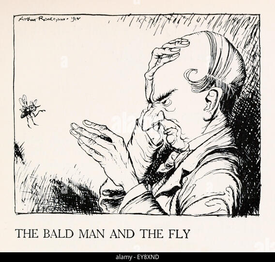 Pictures From The Bald Man And The Fly 110