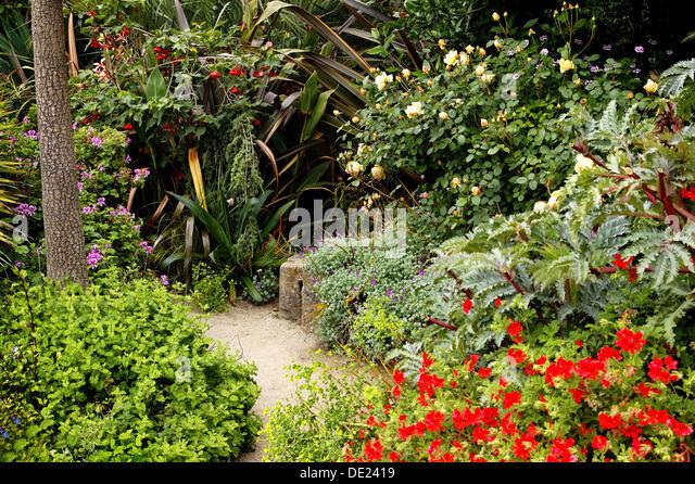 San Francisco Botanical Garden Stock Photos San