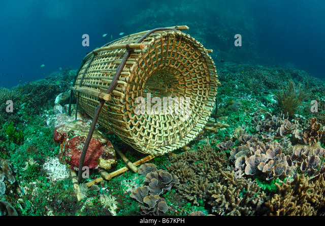Lobster Trap Stock Photos & Lobster Trap Stock Images - Alamy