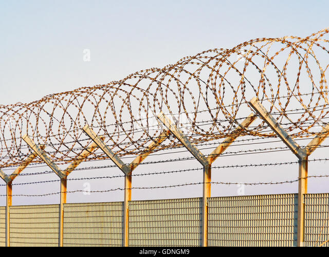 Welded Wire Mesh Stock Photos & Welded Wire Mesh Stock Images - Alamy
