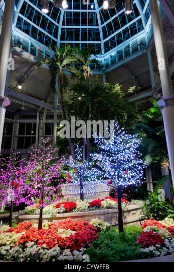 Ginter stock photos ginter stock images alamy for Lewis ginter botanical gardens christmas