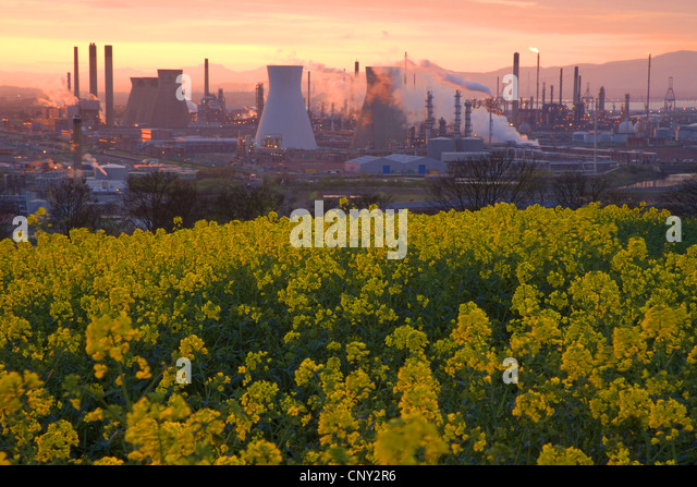 Grangemouth United Kingdom  City pictures : Grangemouth Oil Refinery in evening light, United Kingdom, Scotland ...