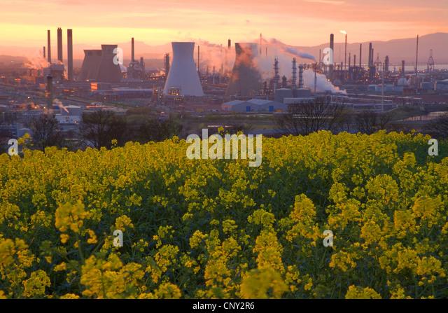 Grangemouth United Kingdom  City pictures : Grangemouth Oil Refinery in evening light, United Kingdom, Scotland ...