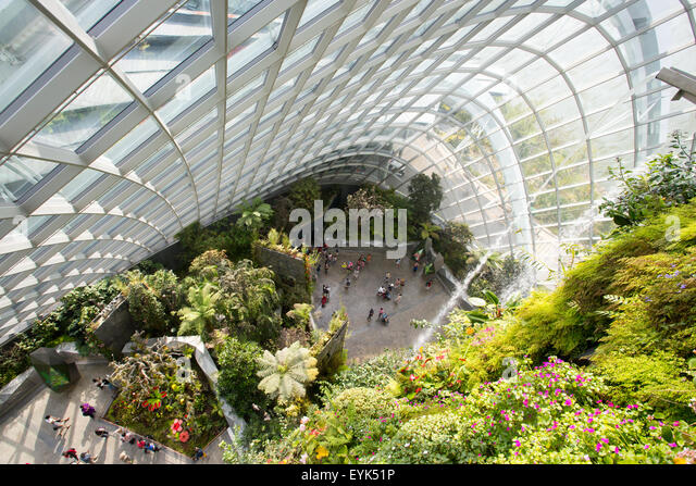 singapore june 212015 the majestic cloud forest dome which is part of