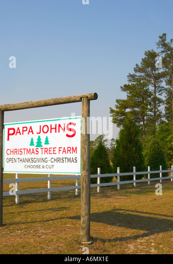 Papa John's Stock Photos & Papa John's Stock Images - Alamy