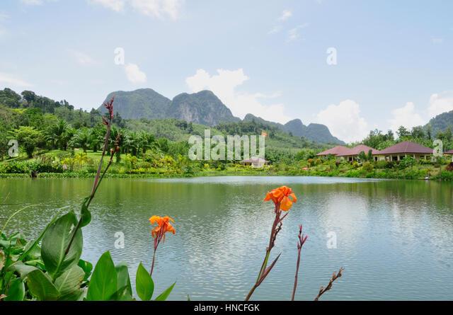 Near krabi stock photos near krabi stock images alamy for Stocked fishing ponds near me