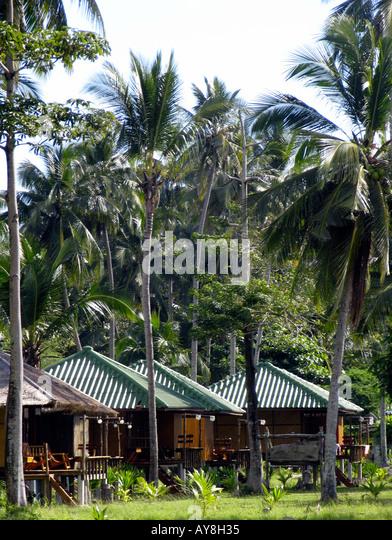 Coconut Grove Beach Resort Stock Photos Coconut Grove