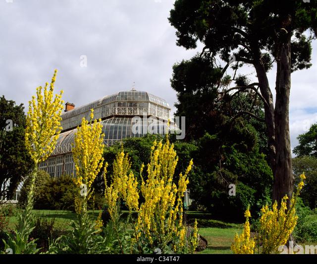 Irish National Botanic Gardens, Dublin, Ireland   Stock Image