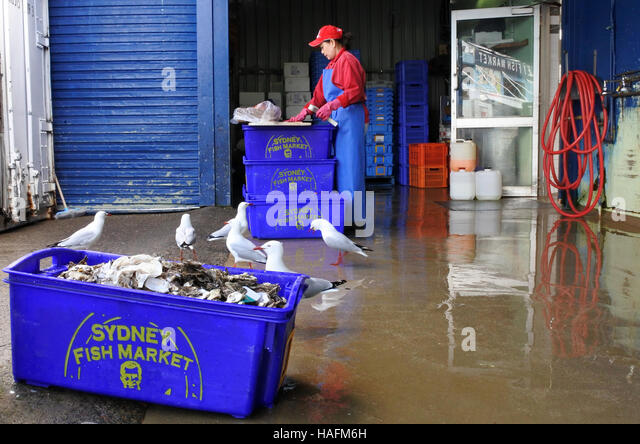 Fisherwoman stock photos fisherwoman stock images alamy for Closest fish market