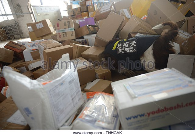 mongolia march stock photos mongolia march stock images alamy. Black Bedroom Furniture Sets. Home Design Ideas